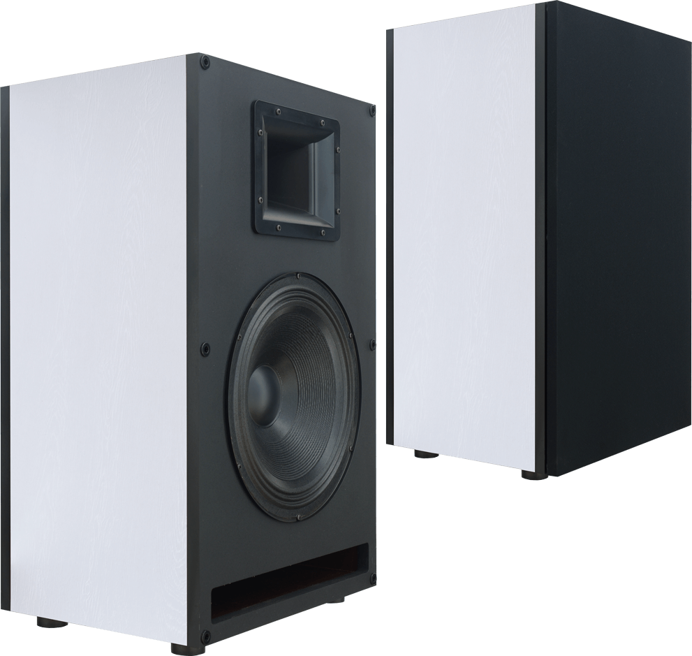 STX F-500 n speakers